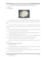 đồ án quy trình công nghệ sản xuất bánh quy