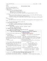 Giáo án hoá học 11  chương trình cơ bản