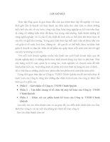 khảo sát các phần hành kế toán của công ty tnhh chính quỳnh