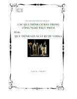 quy trình sản xuất rượu vodka - luận văn, đồ án, đề tài tốt nghiệp
