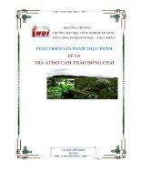 chiến lược phát triển sản phẩm trà atisô cam thảo của công ty tnhh nam nguyên - luận văn, đồ án, đề tài tốt nghiệp