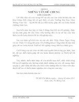 ĐỒ ÁN TỐT NGHIỆP KỸ SƯ CẦU ĐƯỜNG THIẾT KẾ CẦU BÊ TÔNG CỐT THÉP DỰ ỨNG LỰC DẦM SUPER T CĂNG SAU