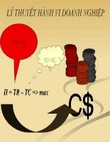 bài giảng kinh tế vĩ mô chương 4 lý thuyết hành vi doanh nghiệp