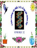 sinh học 12 bài 17. cấu trúc di truyền của quần thể (tiếp theo)