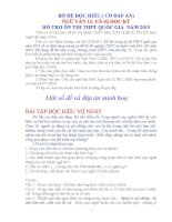 đọc hiểu ngữ văn 12 cả năm