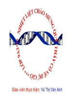 thuyết trình sinh học -  mối quan hệ giữa gen và arn (4)
