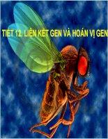 sinh học 12 bài 11. liên kết gen và hoán vị gen ..