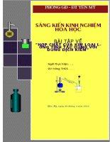 skkn bài tập kim loại lưỡng tính tác dụng với dung dịch kiềm