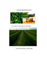 nghiên cứu quy trình trồng, thu hoạch và công nghệ chế biến, bảo quản một số loại chè (trà) quý - luận văn, đồ án, đề tài tốt nghiệp