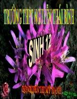 bài giảng sinh học 12 bài 24. các bằng chứng tiến hoá .