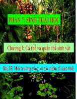 bài giảng sinh học 12 bài 35. môi trường sống và các nhân tố sinh thái.
