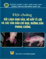 hội chứng rối loạn sinh sản hô hấp ở lợn và các văn bản chỉ đạo phòng chống hướng dẫn