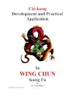 Tài liệu Wing chun kung fu