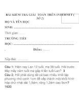 Bài kiểm tra giải toán trên Internet lớp số 2