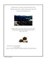 Bài dự thi kiến thức liên môn chương trình Ngữ văn địa phương Tìm hiểu địa phương Tiên Yên