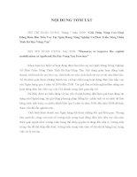 Luận văn: GIẢI PHÁP NÂNG CAO HOẠT ĐỘNG ĐẢM BẢO TIỀN VAY  TẠI NGÂN HÀNG NÔNG NGHIỆP VÀ PHÁT TRIỂN NÔNG  THÔN TỈNH BÀ RỊAVŨNG TÀU