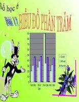 bài giảng số học 6 chương 3 bài 17 biểu đồ phần trăm