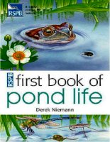 first book of pond life