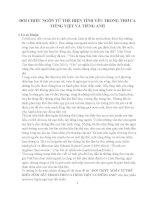 So Sánh ngôn ngữ trong thơ ca Tiếng Việt và Tiếng Anh