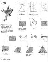 robert lang and john montroll origami sea life