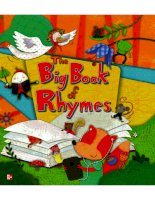 the big book of rhymes