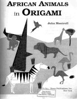 john montroll african animals in origami