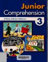 junior comprehension 3