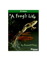 science a frog''s life