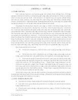 khảo sát, thiết kế hệ thống xử lý nước thải nhà máy tinh bột mì - ninh thuận