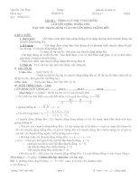 Giáo án tự chọn 10 Nâng cao và cơ bản