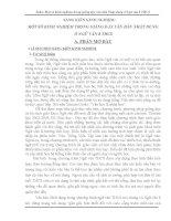 Chuyên đề Một số kinh nghiệm trong giảng dạy văn bản nhật dụng Ngữ văn 8 THCS
