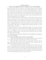 Bài giảng môn kiểm toán tài chính: Chương 7: Báo cáo kiểm toán tài chính