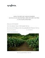 BÁO cáo kết QUẢ KHẢO NGHIỆM ĐÁNH GIÁ rủi RO NGÔ bt11 đối với môi TRƯỜNG và đa DẠNG SINH học