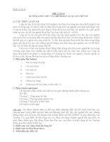 hướng dẫn viết và trình bày luận án tiến sĩ