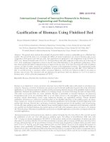 KHÍ HÓA TẦNG SÔI Gasification of Biomass Using Fluidized Bed