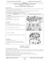 giáo an lớp 5 tuần 28 cực chuẩn của Trần Thanh Tân