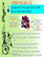 bài 20. cân bằng nội môi