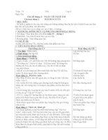 GIÁO ÁN HĐNGLL TUẦN 19-28 LỚP 4