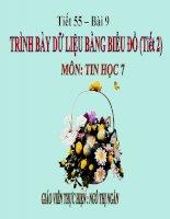 Bai 9: trinh bay du lieu bang bieu do (tiet 2)- tin hoc 7