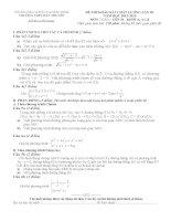 Đề thi khảo sát Khối 10-A-A1-B- lần 3- Tháng 3-2013
