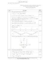 Đáp án đề thi môn toán học kì 1 lớp 12 tỉnh Đồng Nai