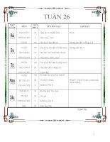 TUAN 26 (My Ha)