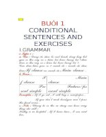 conditional sentences and exercises
