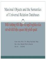 báo cáo đối tượng tối đại và ngữ nghĩa của cơ sở dữ liệu quan hệ phổ quát