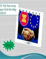 Việt Nam trong quá trình hội nhập ASEAN