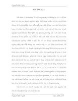 MỘT SỐ Ý KIẾN ĐỀ XUẤT NHẰM HOÀN THIỆN CÔNG TÁC KẾ TOÁN NGUYÊN VẬT LIỆU VỚI VIỆC NÂNG CAO HIỆU QUẢ SỬ DỤNG NGUYÊN VẬT LIỆU TẠI CÔNG TY TNHH HOÀNG TRÀ