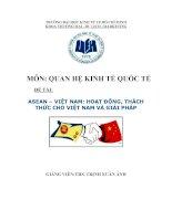 Cơ Hội và Thách Thức Cho Việt Nam Trong Hiệp Định Việt Nam  ASEAN