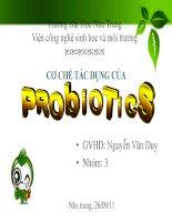 cơ chế tác dụng của probiotics