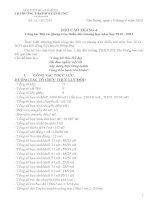 bao cao hoat dong Đội và phong trào TTN tháng 4
