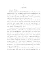 Luận văn thạc sỹ: Nghiên cứu một số đặc điểm về sinh lý, hình thái và năng suất của một số dòng, giống đậu tương trong điều kiện vụ Đông tại Thanh Trì – Hà Nội